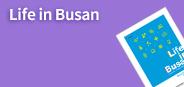 Life in Busan